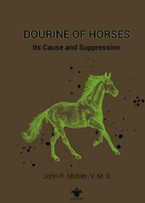 Dourine of Horses Its Cause and Suppression